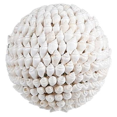 Bola Seashell